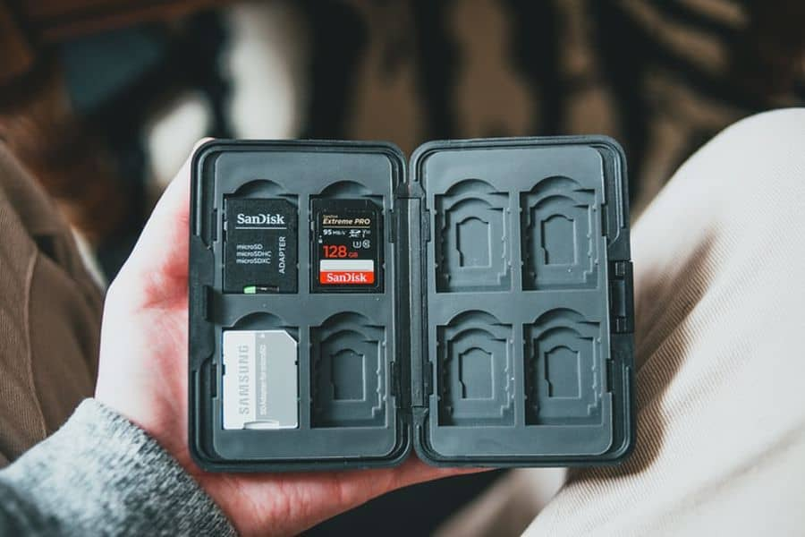 Person holding a case filled with memory cards