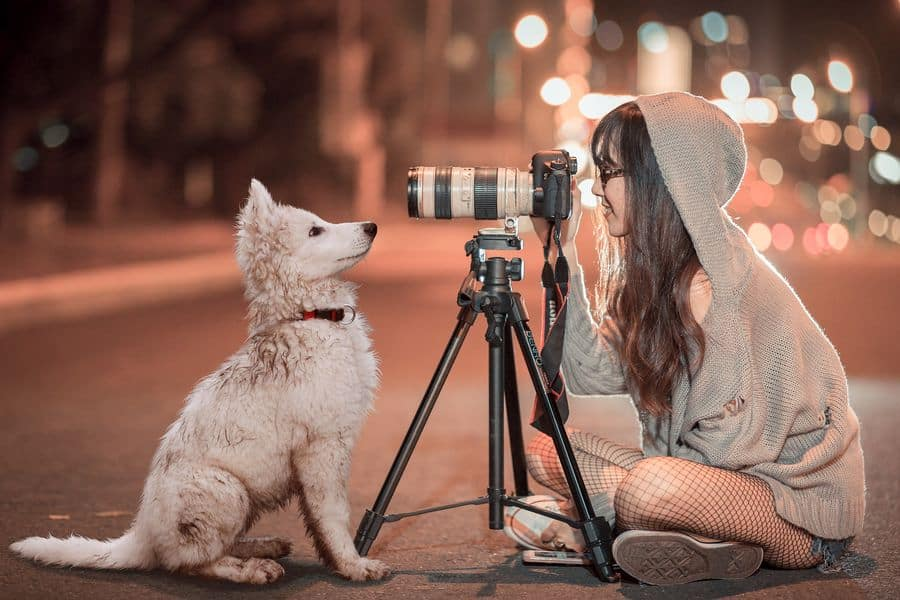 Woman taking a photo of a dog