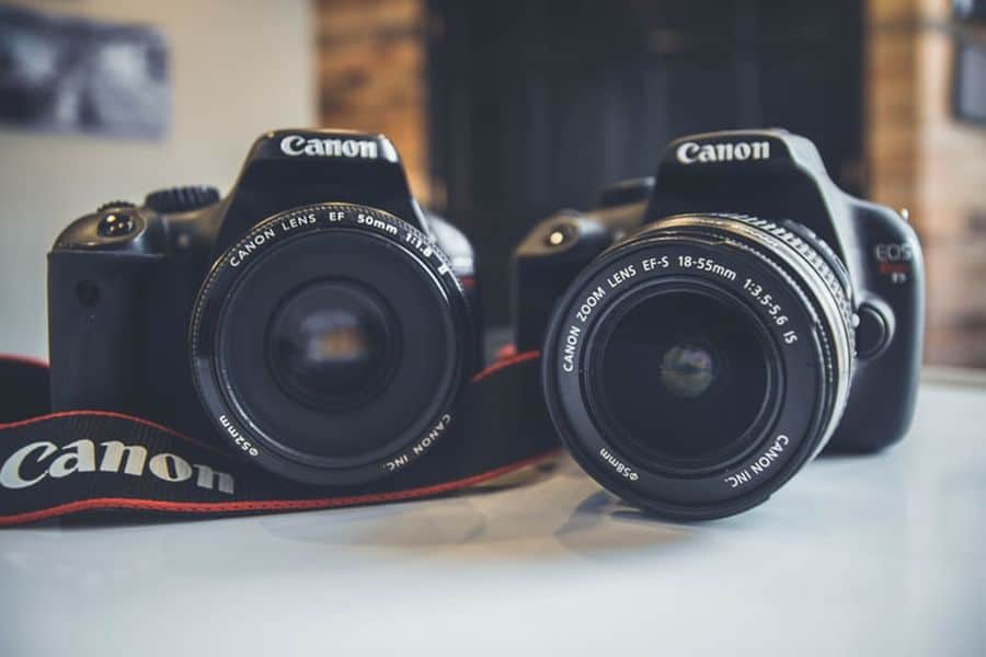 Canon cameras with a 50mm lens and an 18-55mm lens